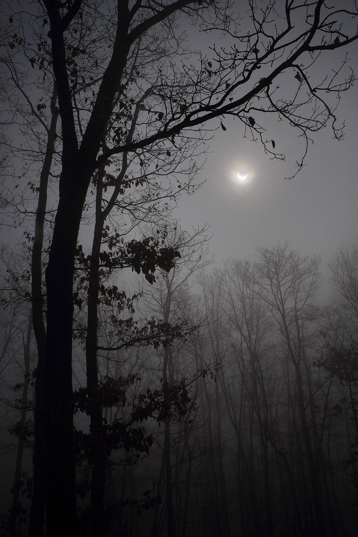 photographie rare éclipse de soleil