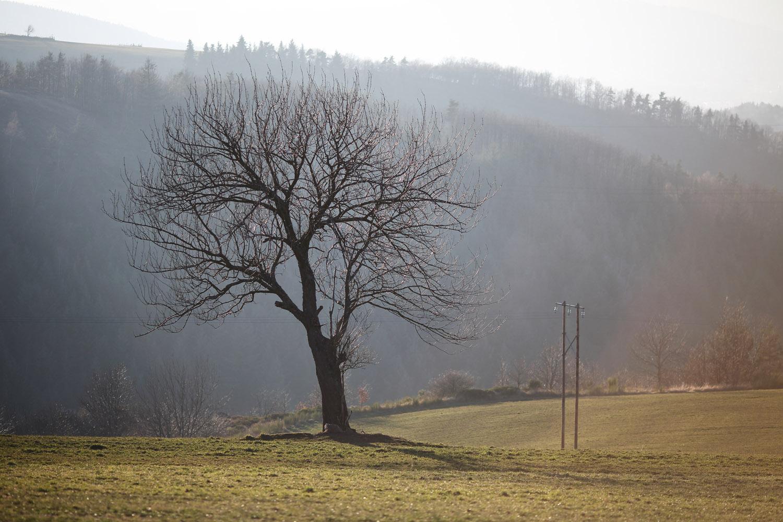 Paysage & Nature