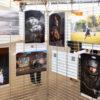 Exposition à Mulhouse