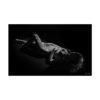 lignes-et-corps-tirage-art-_0000_60x37-supportmat-rigide-noir-02